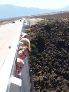 The cousins youngest to oldest looking over the bridge. I would have freaked out if I saw this happening.