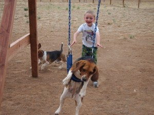 Baden pushing Ruby on the swing.